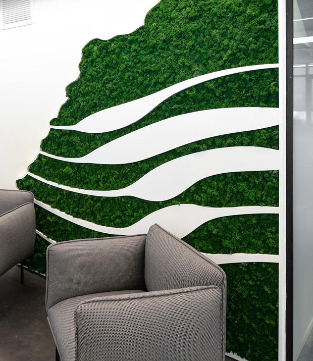 עיצוב משרדים | מיתוג גרפי | חברת תדיראן| עיצוב מוצר | עיצוב גרפי במרחב | מיתוג משרדים | עיצוב חללי עבודה | עיצוב קירות