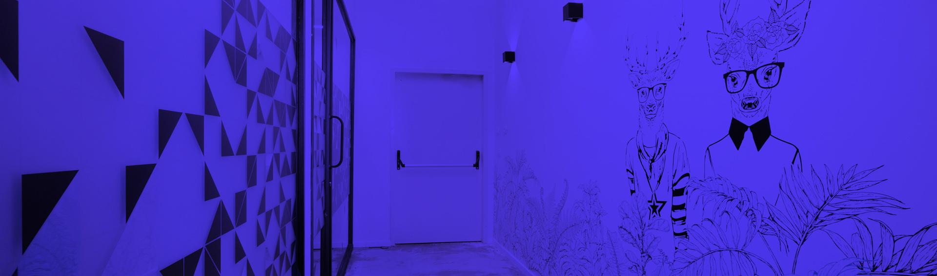 עיצוב משרדים | מיתוג גרפי | עיצוב גרפי במרחב | מיתוג משרדים | עיצוב חללי עבודה | עיצוב קירות